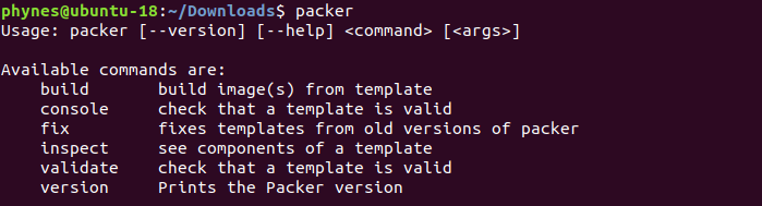 confirm packer install